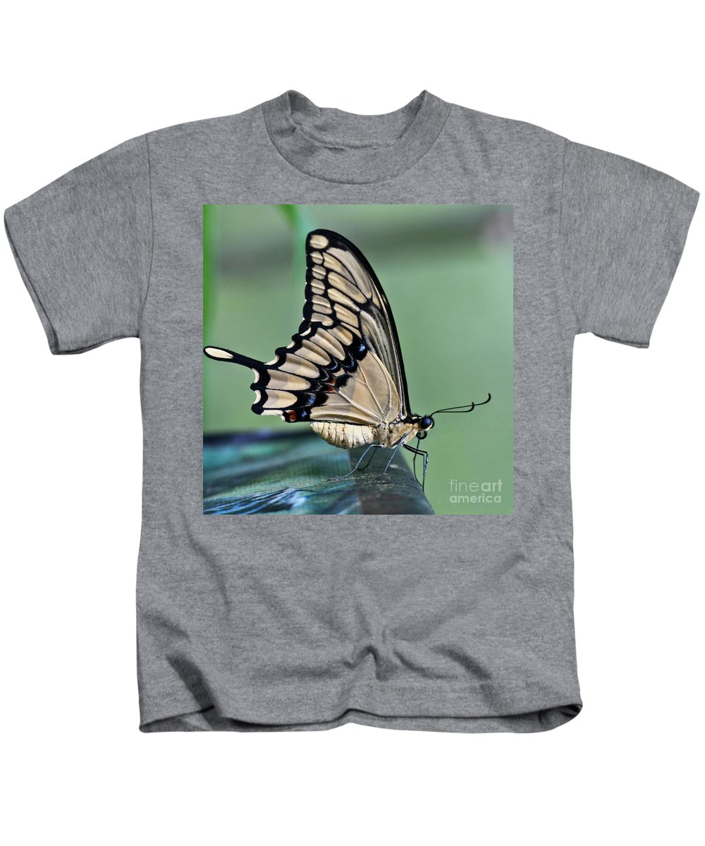 Heiko Kids T-Shirt featuring the photograph Thoas Swallowtail Butterfly by Heiko Koehrer-Wagner