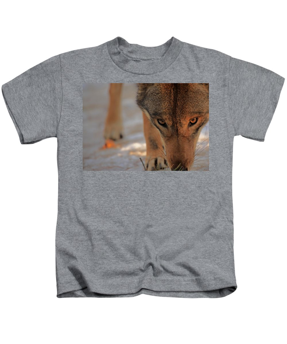 Wolf Kids T-Shirt featuring the photograph Those Eyes by Karol Livote