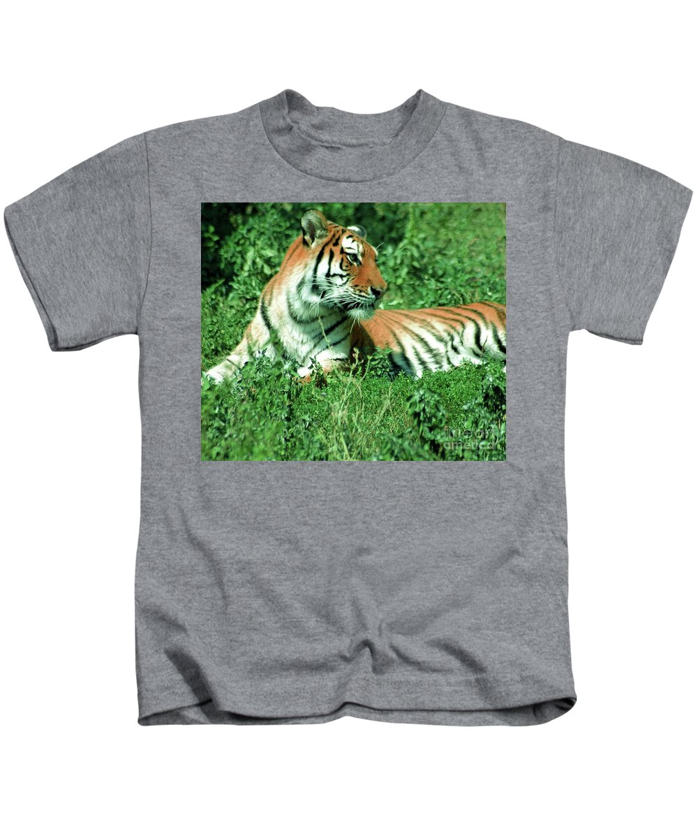 #tiger #animal #mammal #nature #outdoor #tan #whit # Kids T-Shirt featuring the photograph Tiger by Kathleen Struckle