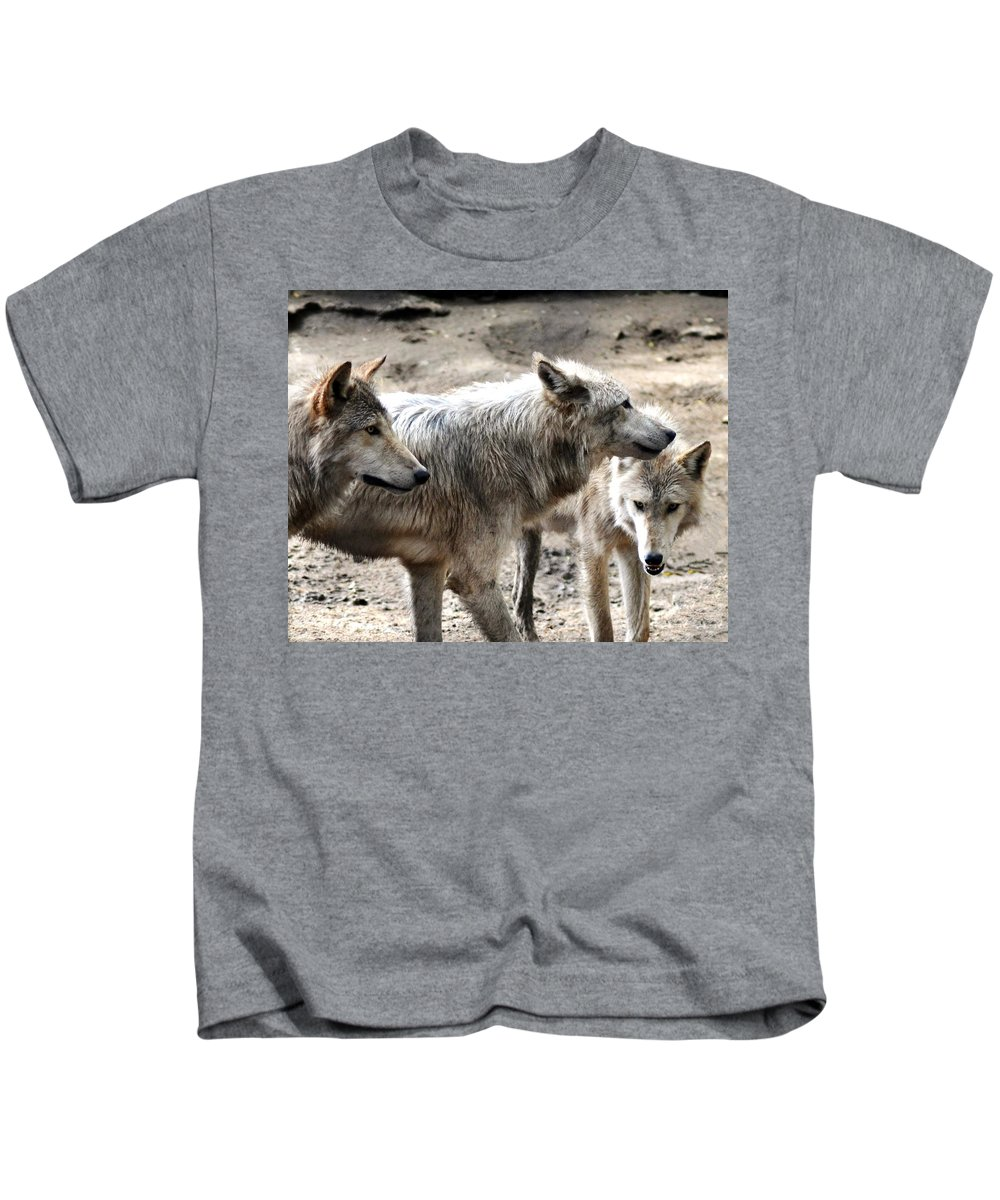 Wolf Kids T-Shirt featuring the photograph Timber Wolves by Patricia Quandel