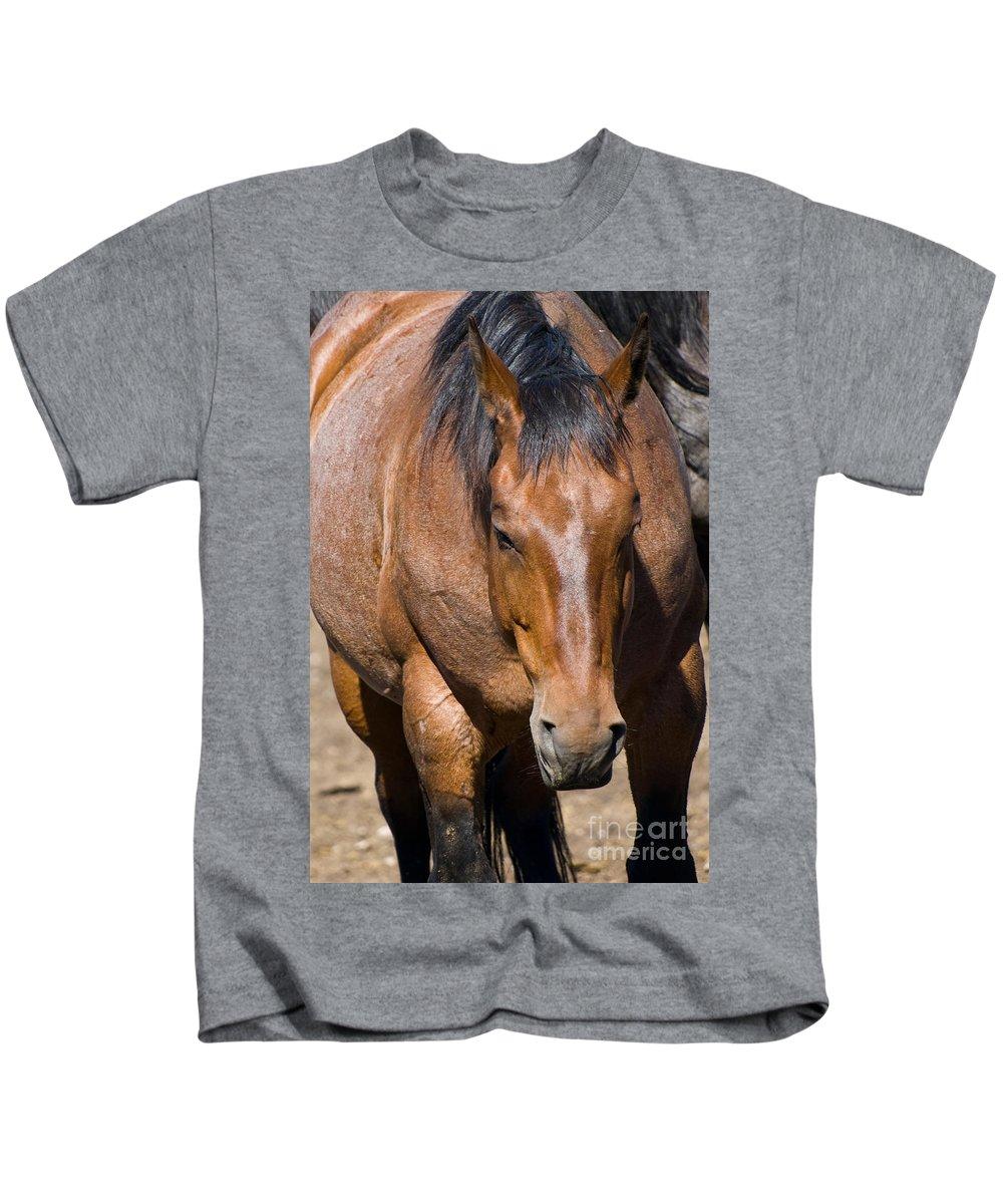 Strong Horse Kids T-Shirt featuring the photograph Tensile Strength by Tara Lynn