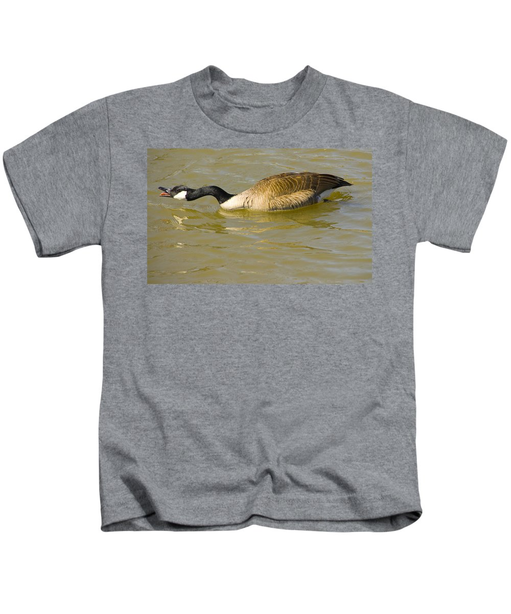 Tulsa Photographs Kids T-Shirt featuring the photograph Tongue In Goose I by Vernis Maxwell