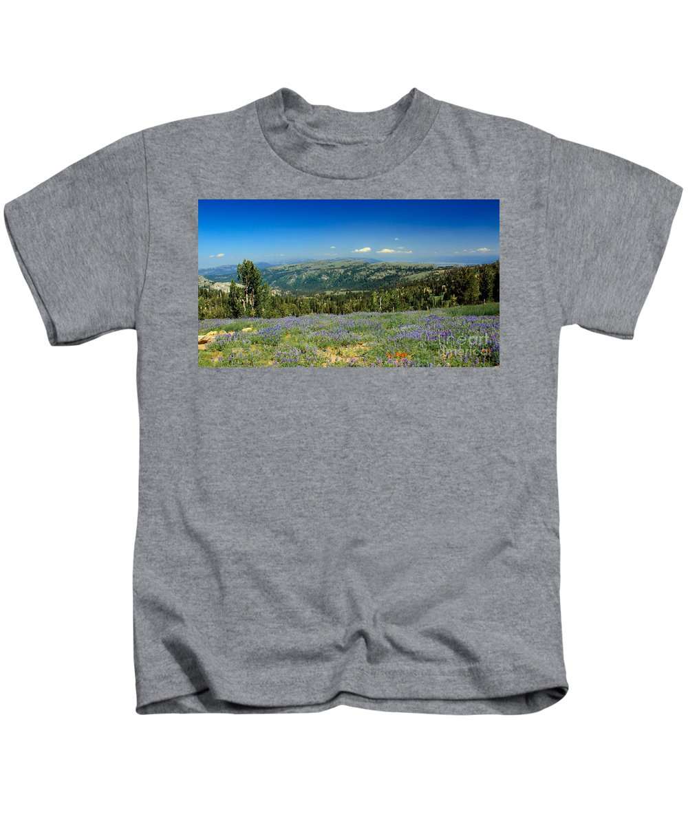 Southwest Idaho Kids T-Shirt featuring the photograph Vast View And Lupine by Robert Bales