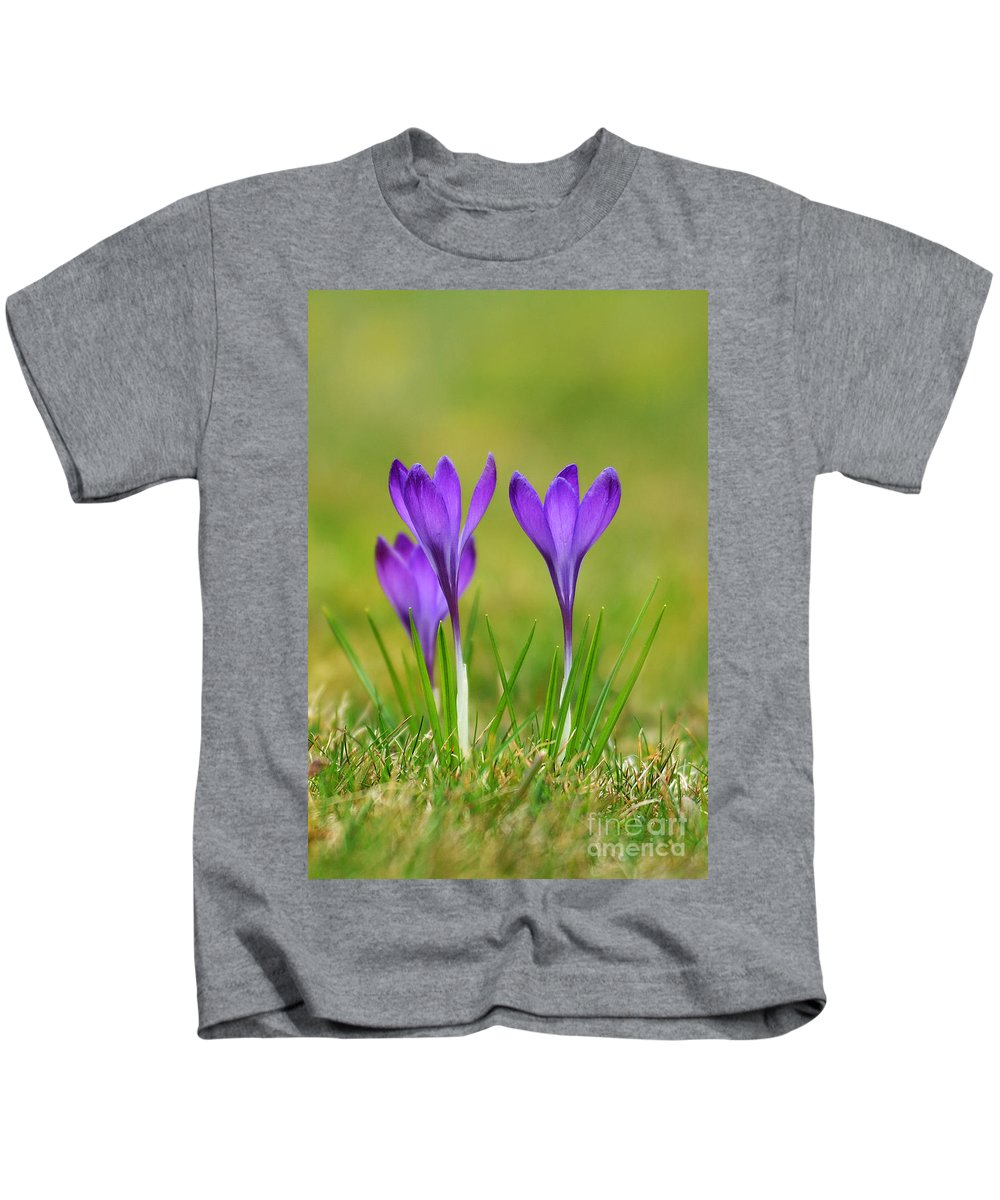 Trio Kids T-Shirt featuring the photograph Trio Of Violet Crocuses by Jaroslaw Blaminsky