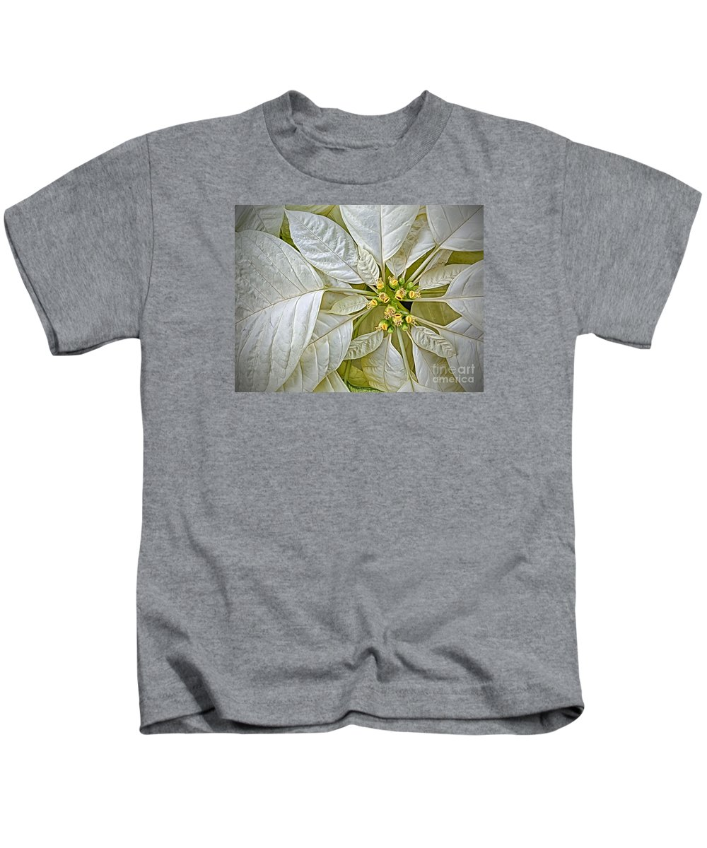 Poinsettia Kids T-Shirt featuring the photograph White Poinsettia by Dee Johnson
