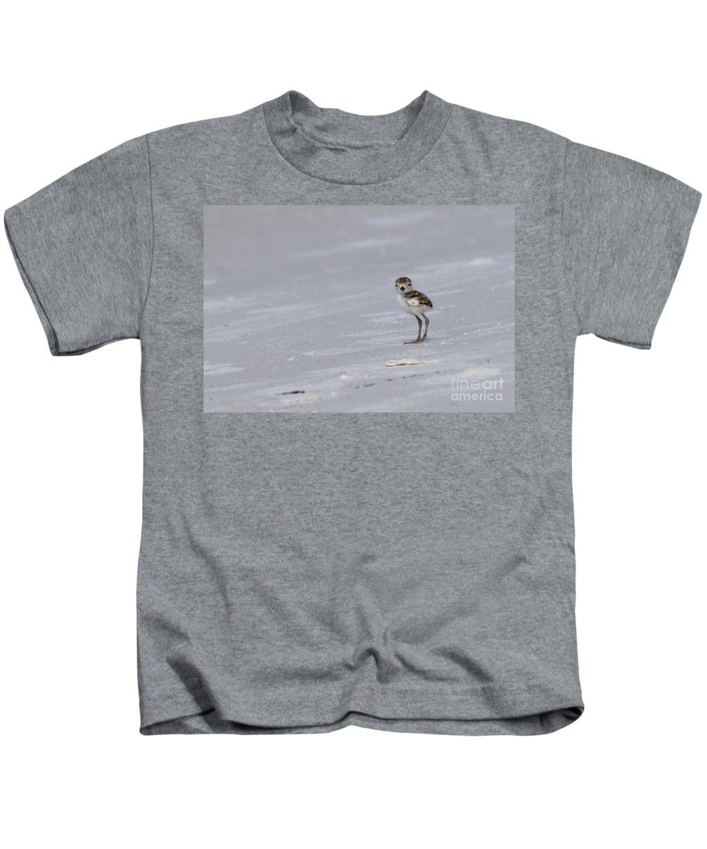 Wilson's Plover Kids T-Shirt featuring the photograph Wilson's Plover Chick Photo by Meg Rousher