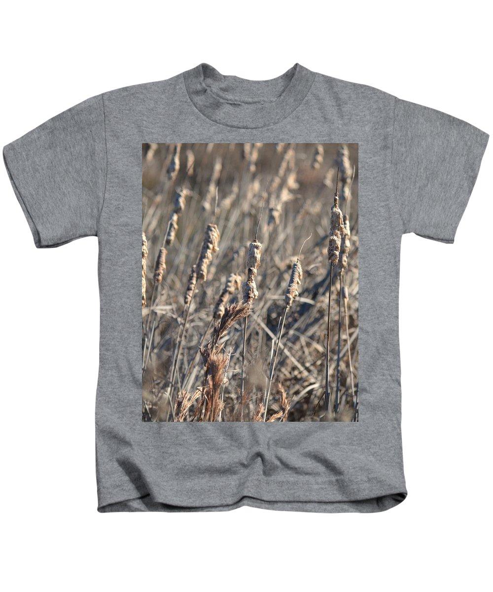 Winter Cattail Abstract Kids T-Shirt featuring the photograph Winter Cattail Abstract by Maria Urso