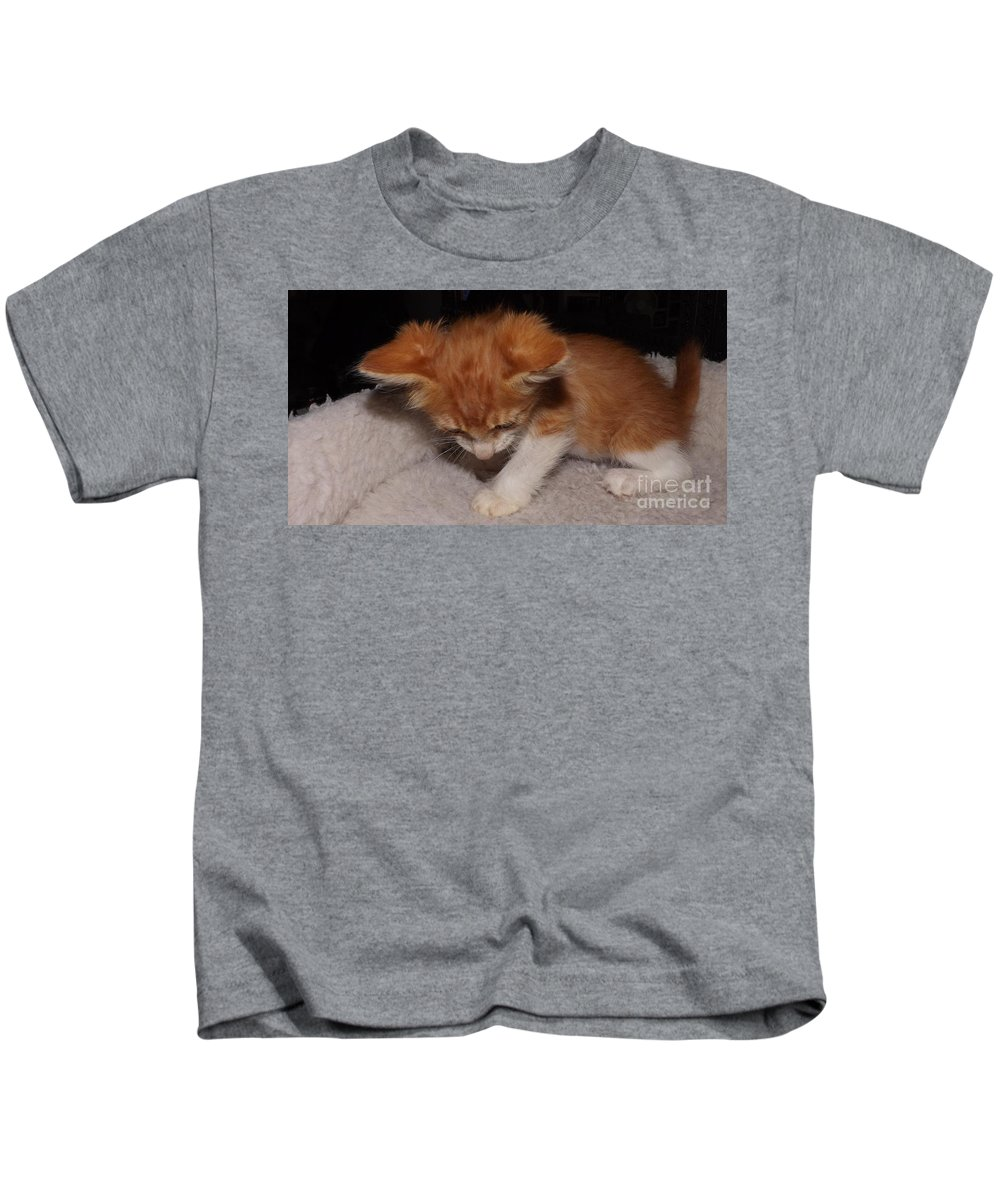 Kitten Kids T-Shirt featuring the photograph Yoda by Jussta Jussta