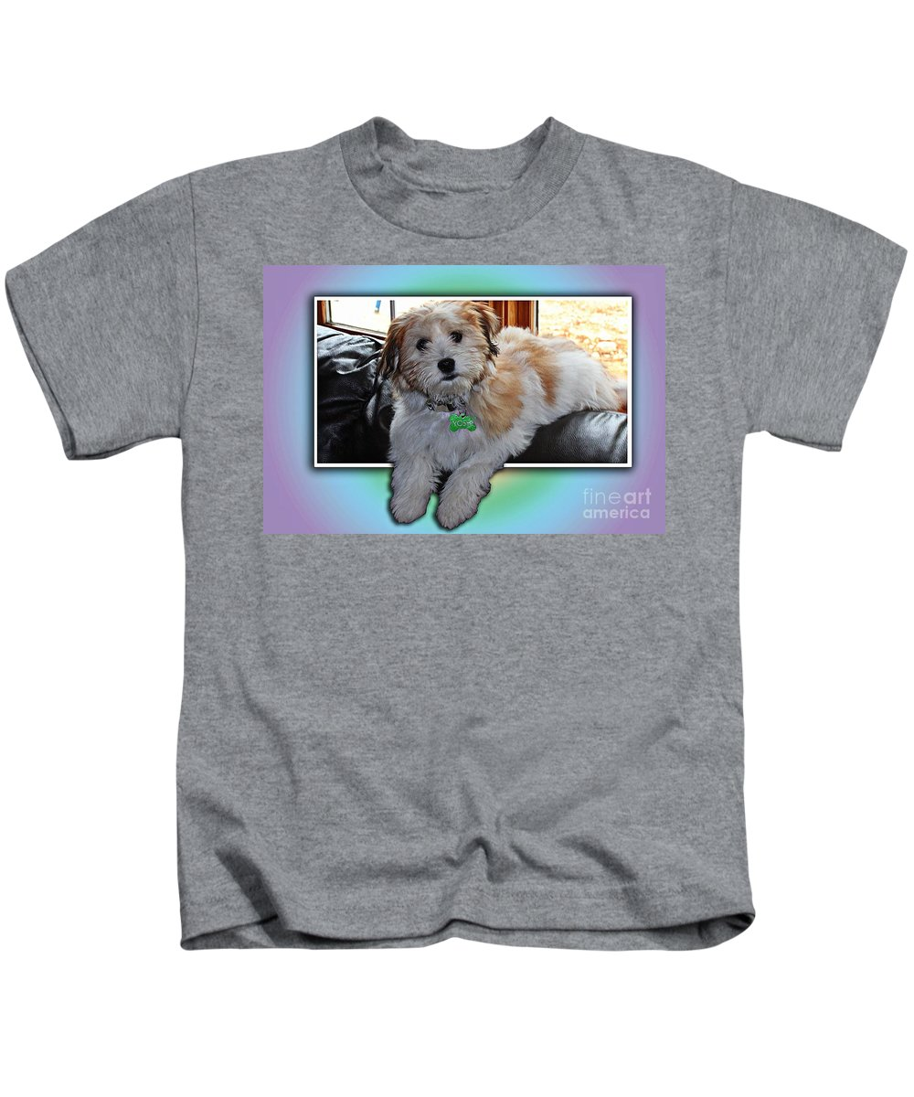 Yoshi Havanese Puppy Kids T-Shirt featuring the photograph Yoshi Havanese Puppy by Barbara Griffin