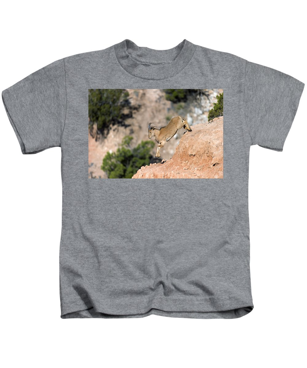 Young Kids T-Shirt featuring the photograph Young Auodad Sheep Descending The Canyon by Gary LangleyYoung Auodad sheep desending the Canyon