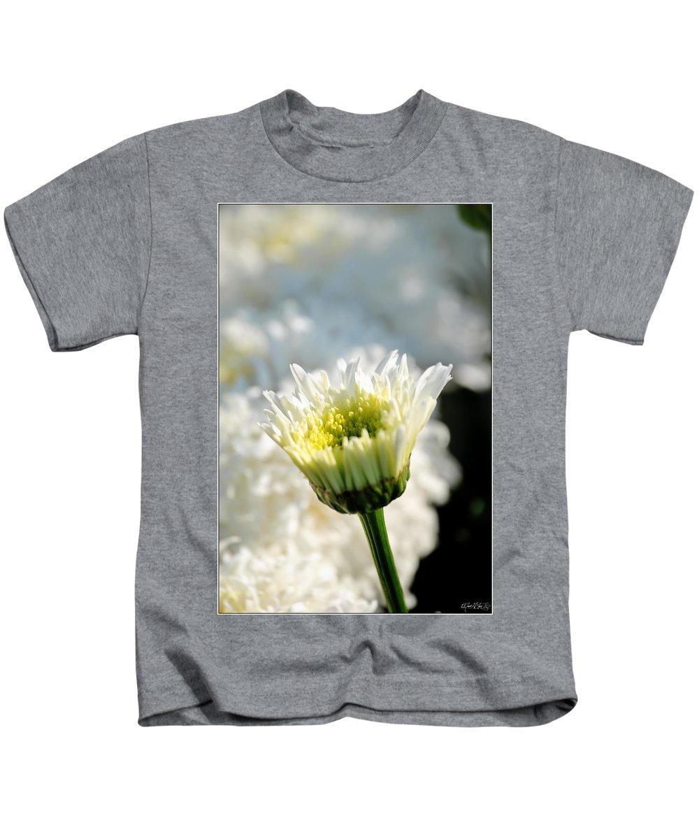 Kids T-Shirt featuring the photograph 0002 Leucanthemum Cog Hill Awakening by Michael Frank Jr