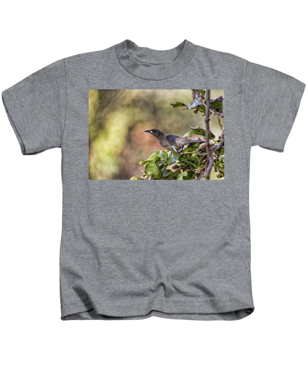 White-gaped Honeyeater Kids T-Shirt featuring the photograph Sweet As Honey by Douglas Barnard
