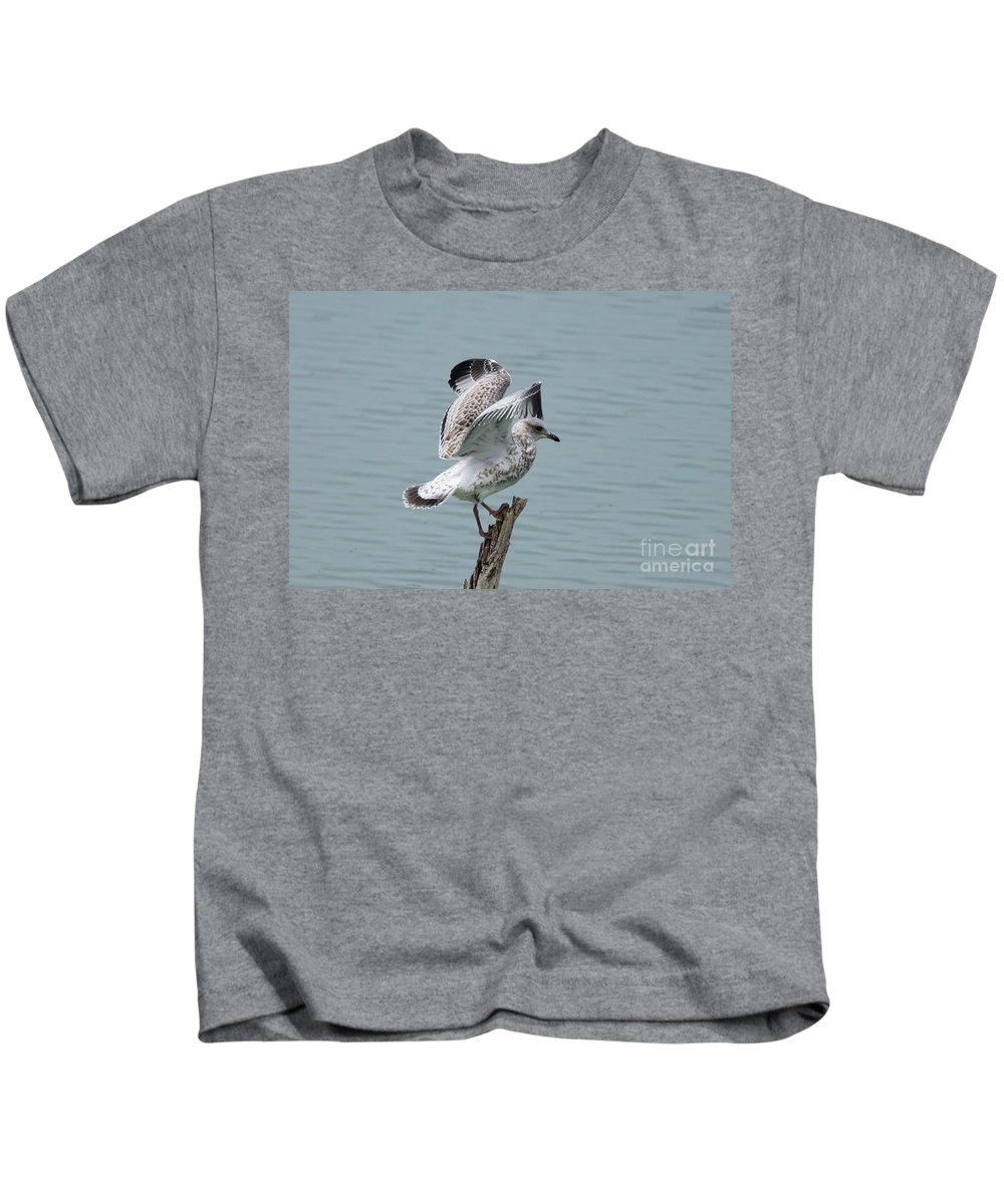 Seagull Kids T-Shirt featuring the photograph Wing Test by Lori Tordsen