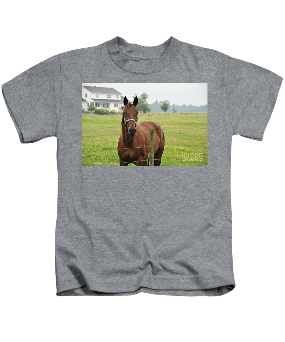 Horse Kids T-Shirt featuring the photograph Amish Horse by David Arment