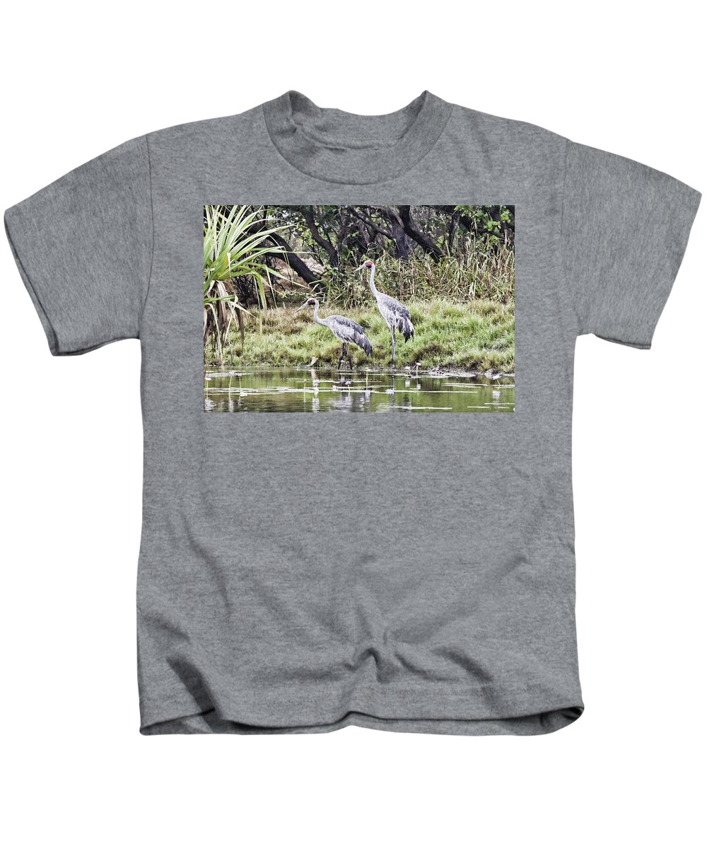 Corroboree Billabong Kids T-Shirt featuring the photograph Australian Cranes at the Billabong by Douglas Barnard