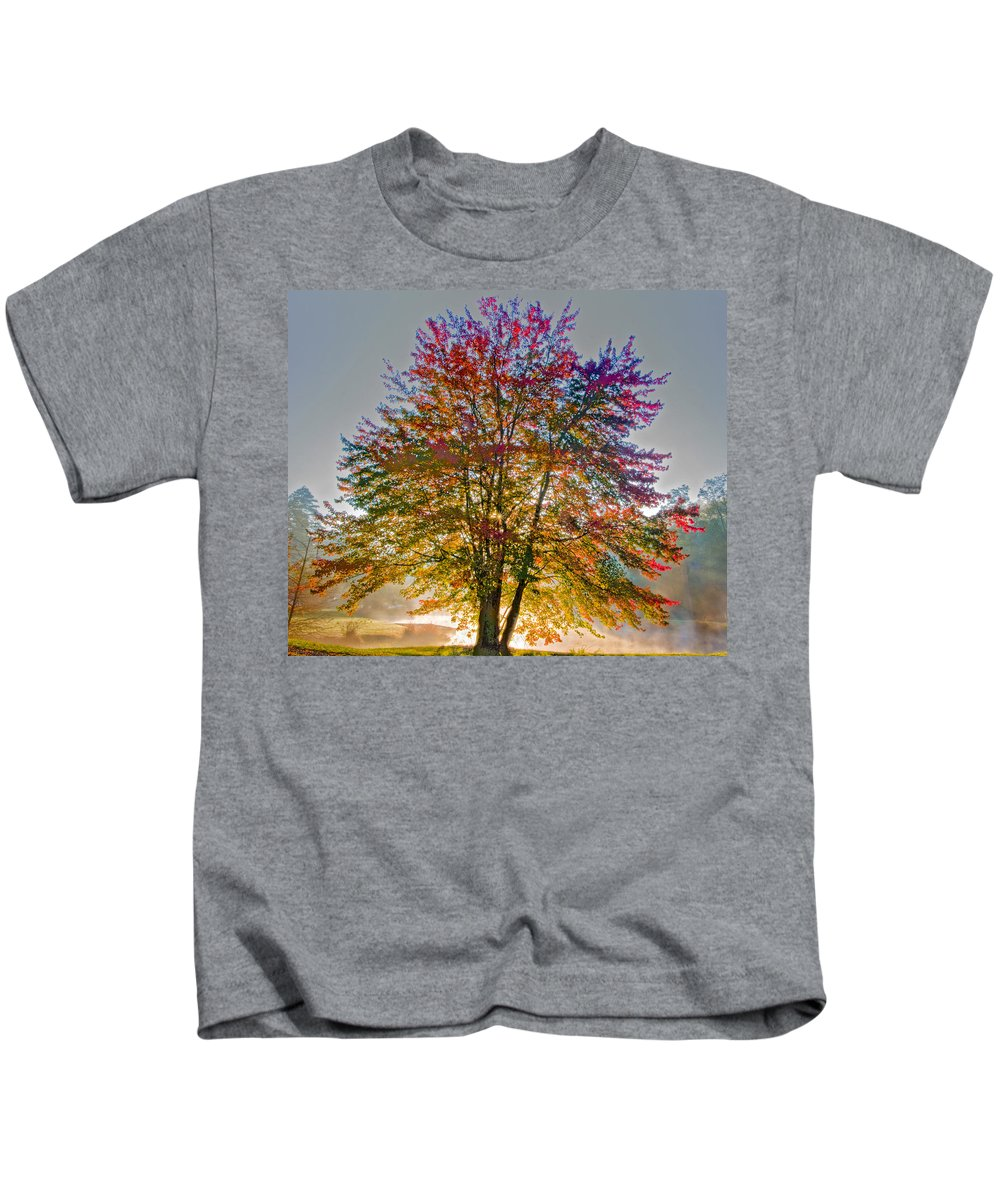 Maple Kids T-Shirt featuring the photograph Backlit Maple In Autumn's Light by Rob Travis