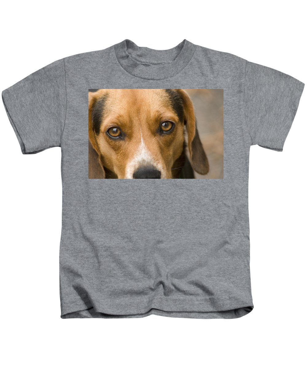 Dog Kids T-Shirt featuring the photograph Beagle Hound Dog Eyes Of Love by Kathy Clark