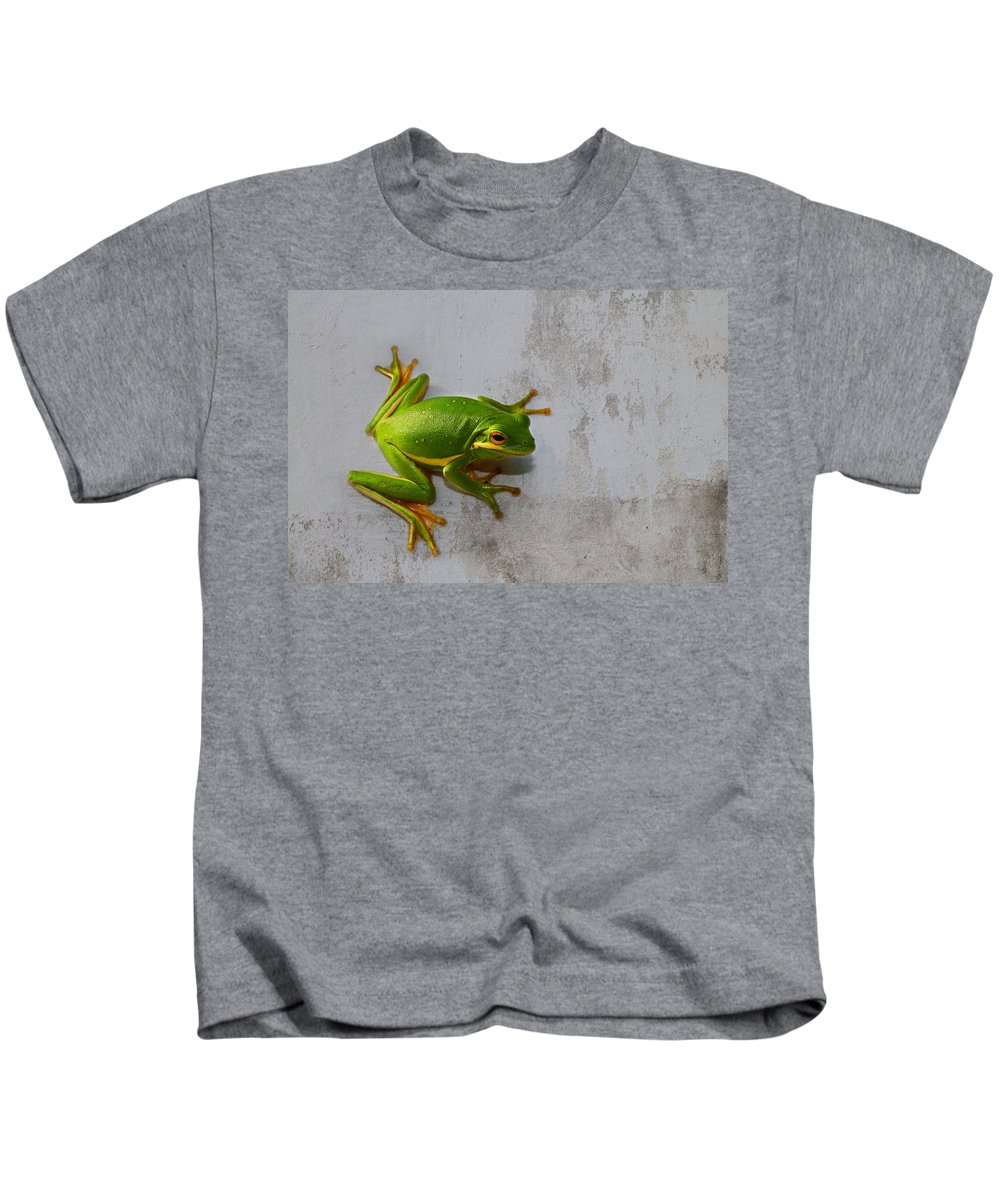 Hyla Cinerea Kids T-Shirt featuring the photograph Beautiful American Green Tree Frog On Grunge Background by Kathy Clark