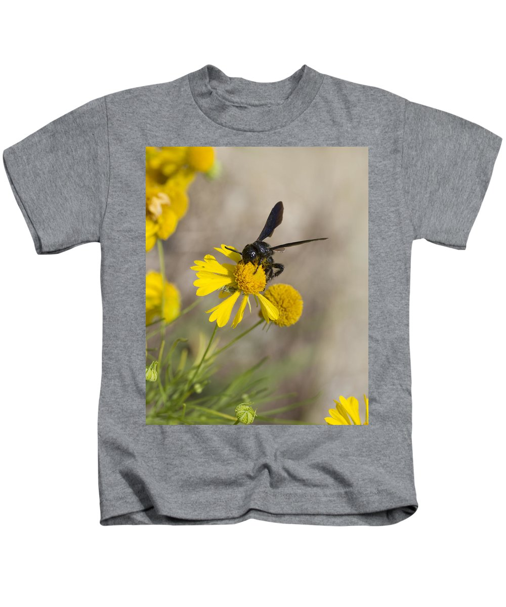 Bitterweed Kids T-Shirt featuring the photograph Bitterweed and Black Wasp by Kathy Clark