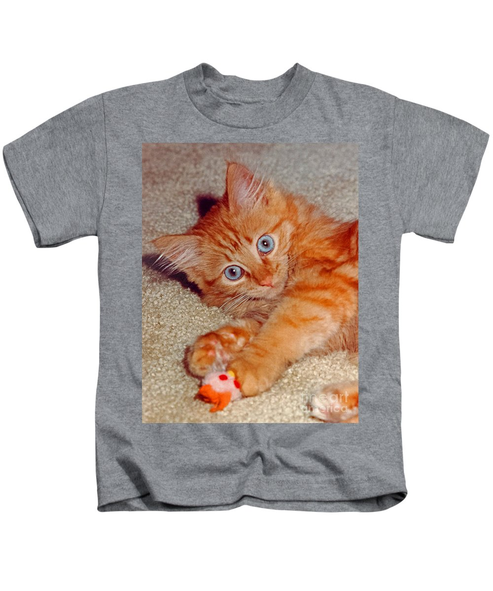 Cats Kids T-Shirt featuring the photograph Blue-eyed Kitty by Randy Harris