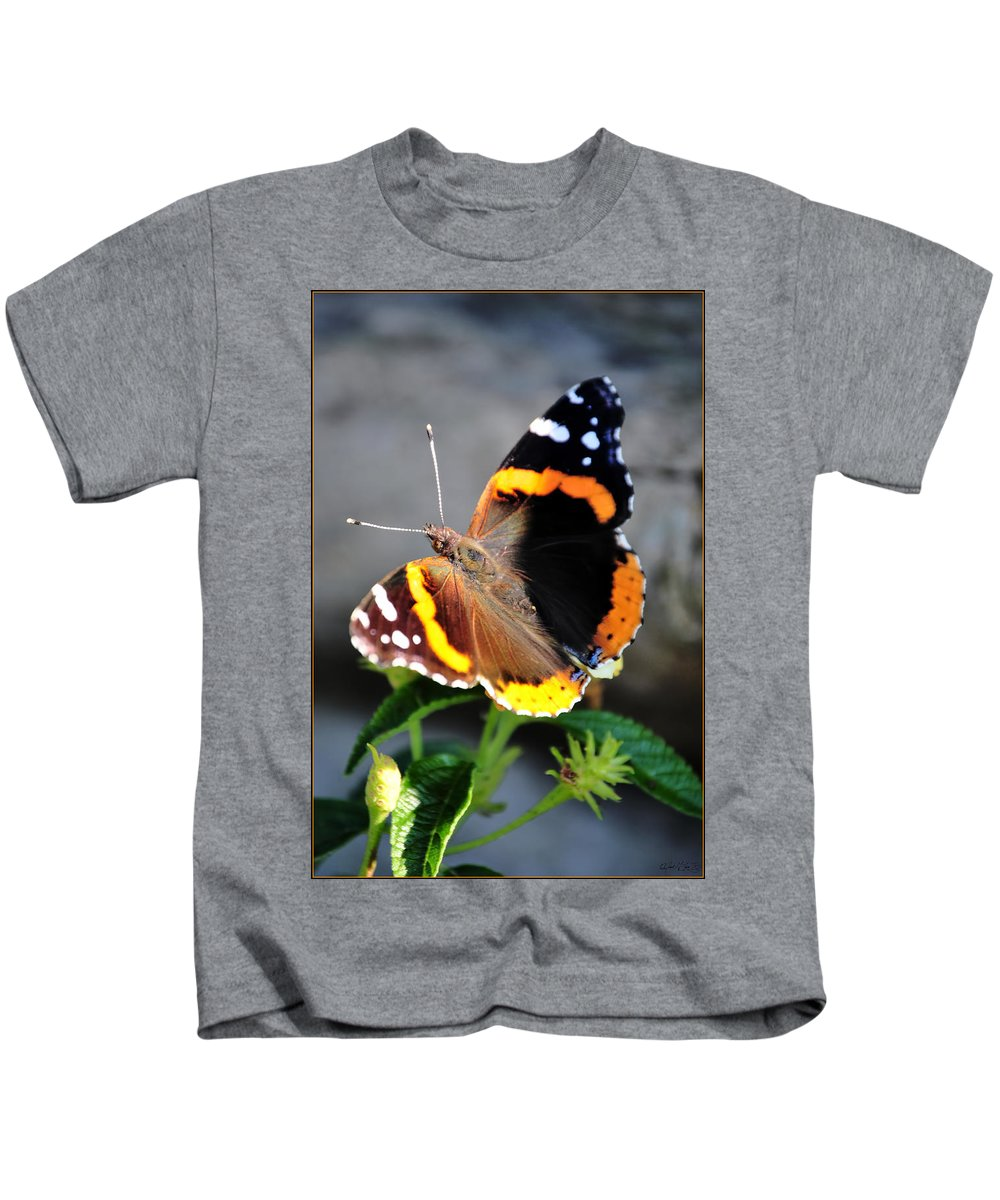 Kids T-Shirt featuring the photograph Butterfly Tai Chi On Lantana Luscious Lemonade by Michael Frank Jr
