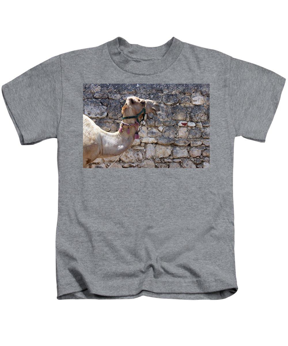 Camel Kids T-Shirt featuring the photograph Camel At Sebastia by Munir Alawi
