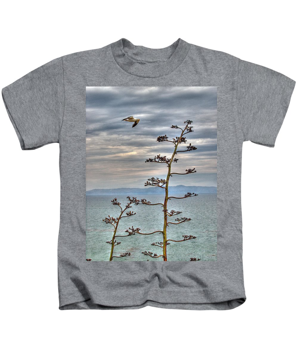 Catalina Island Kids T-Shirt featuring the photograph Catalina Gull And Channel by Joe Schofield