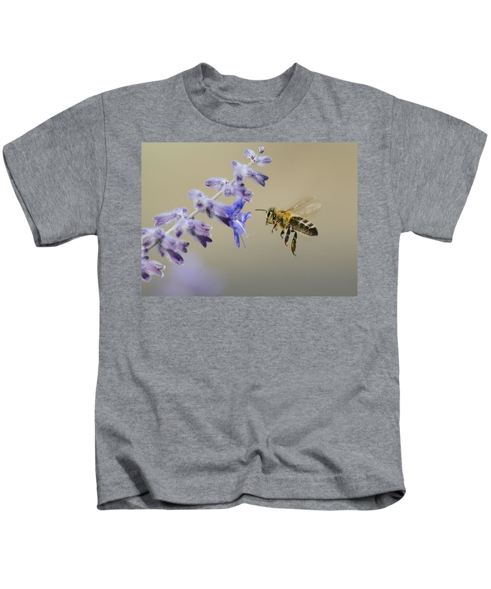 Honey Bee Kids T-Shirt featuring the photograph Caught In Flight by Dianne Phelps