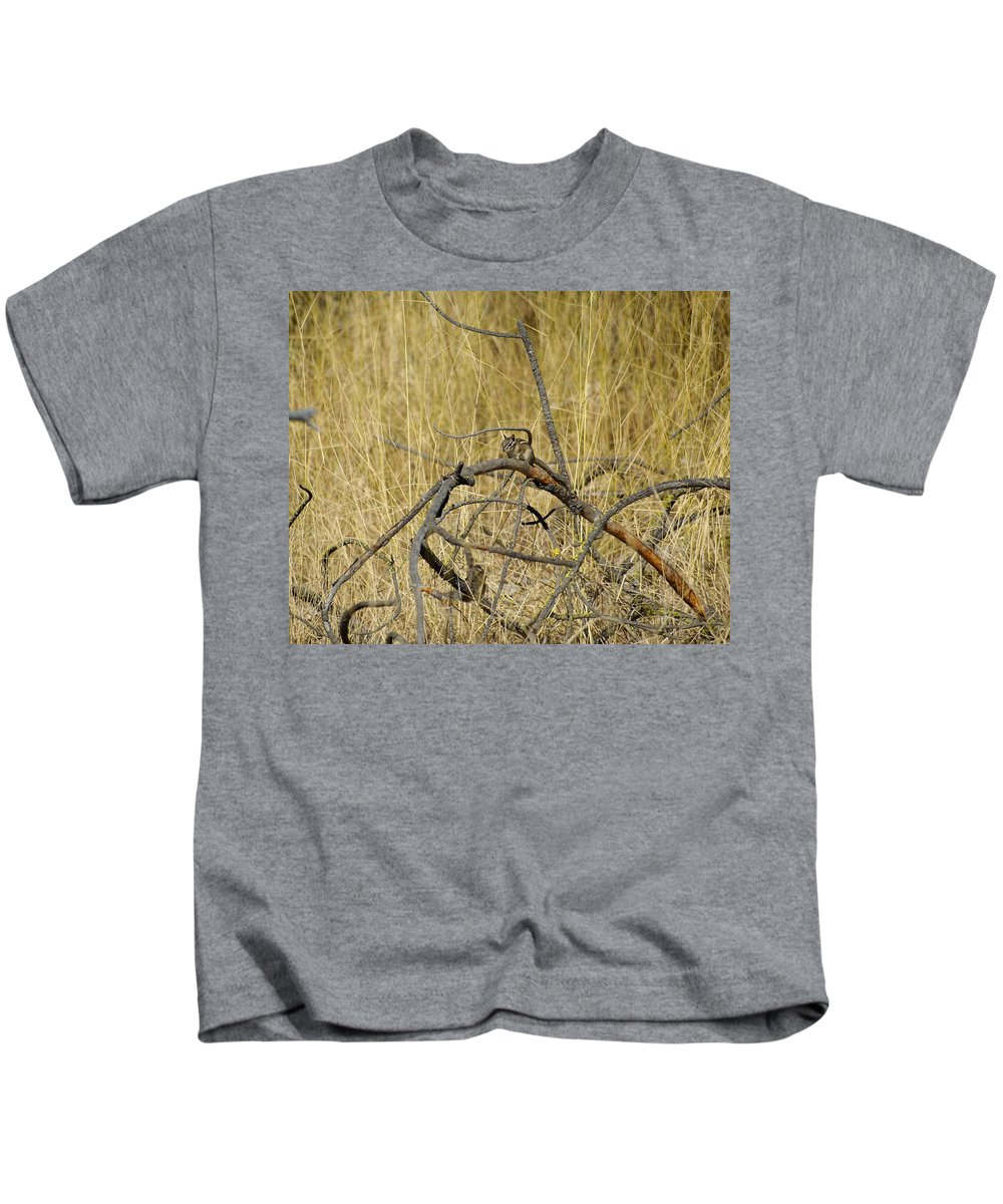 Chipmunks Kids T-Shirt featuring the photograph Chipmunk In The Sun by Ben Upham III