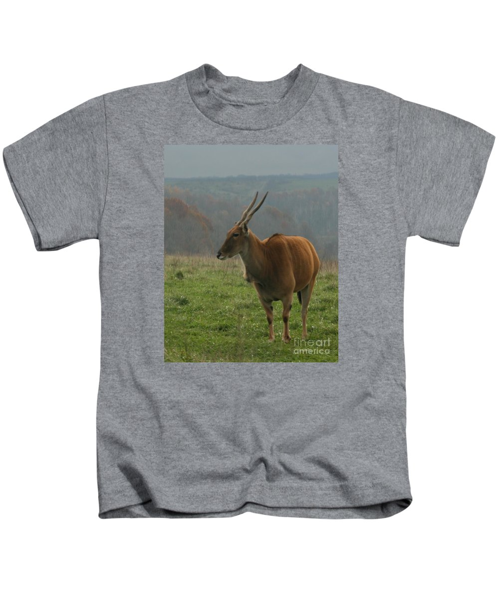 Wildlife Kids T-Shirt featuring the digital art Common Eland by Dawn Downour