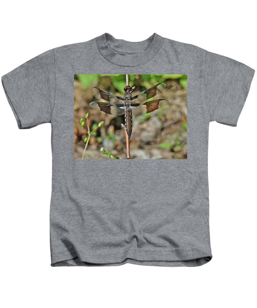 Dragonfly Kids T-Shirt featuring the photograph Common Whitetail Dragonfly - Plathemis Lydia - Female by Mother Nature