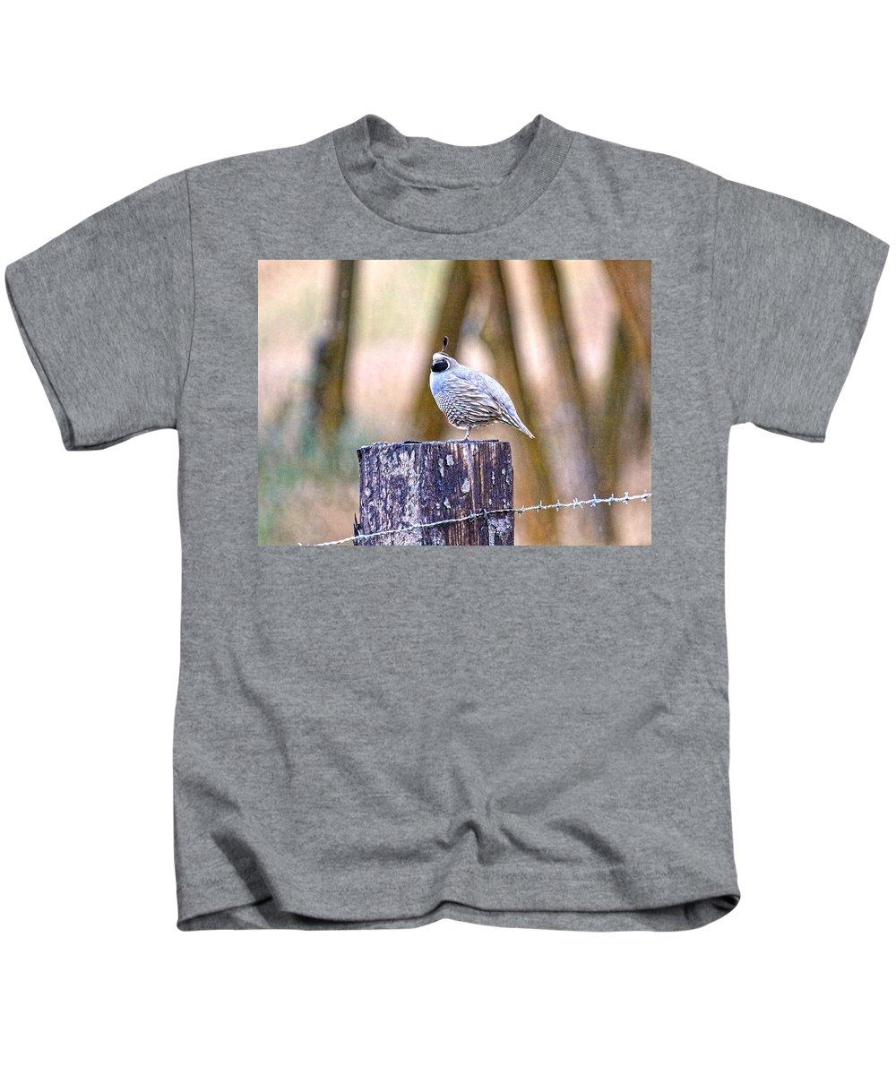 Quail Kids T-Shirt featuring the photograph Country Quail by Steve McKinzie