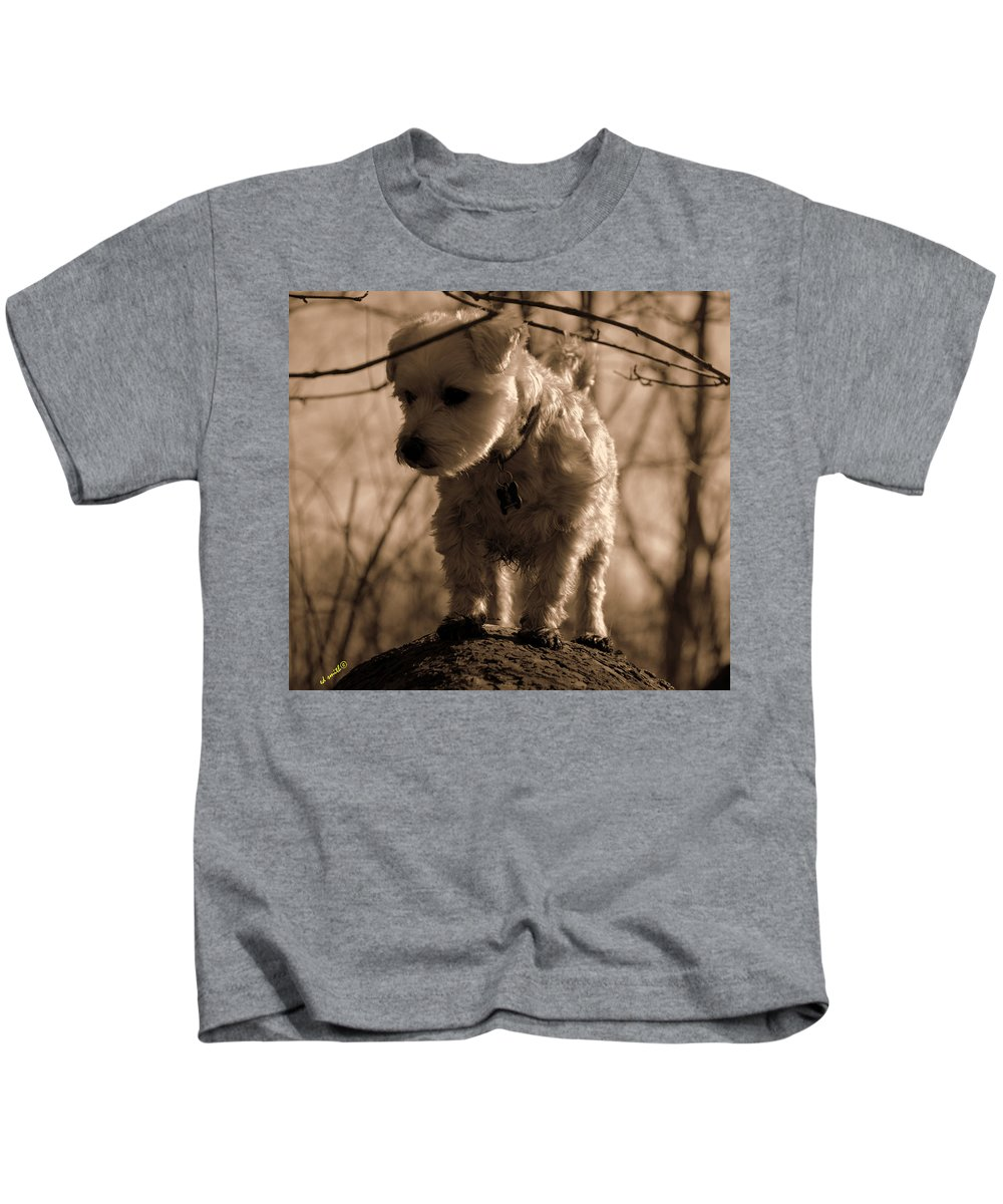 Domesticated Giant Tree Squirrel Kids T-Shirt featuring the photograph Domesticated Giant Tree Squirrel by Ed Smith