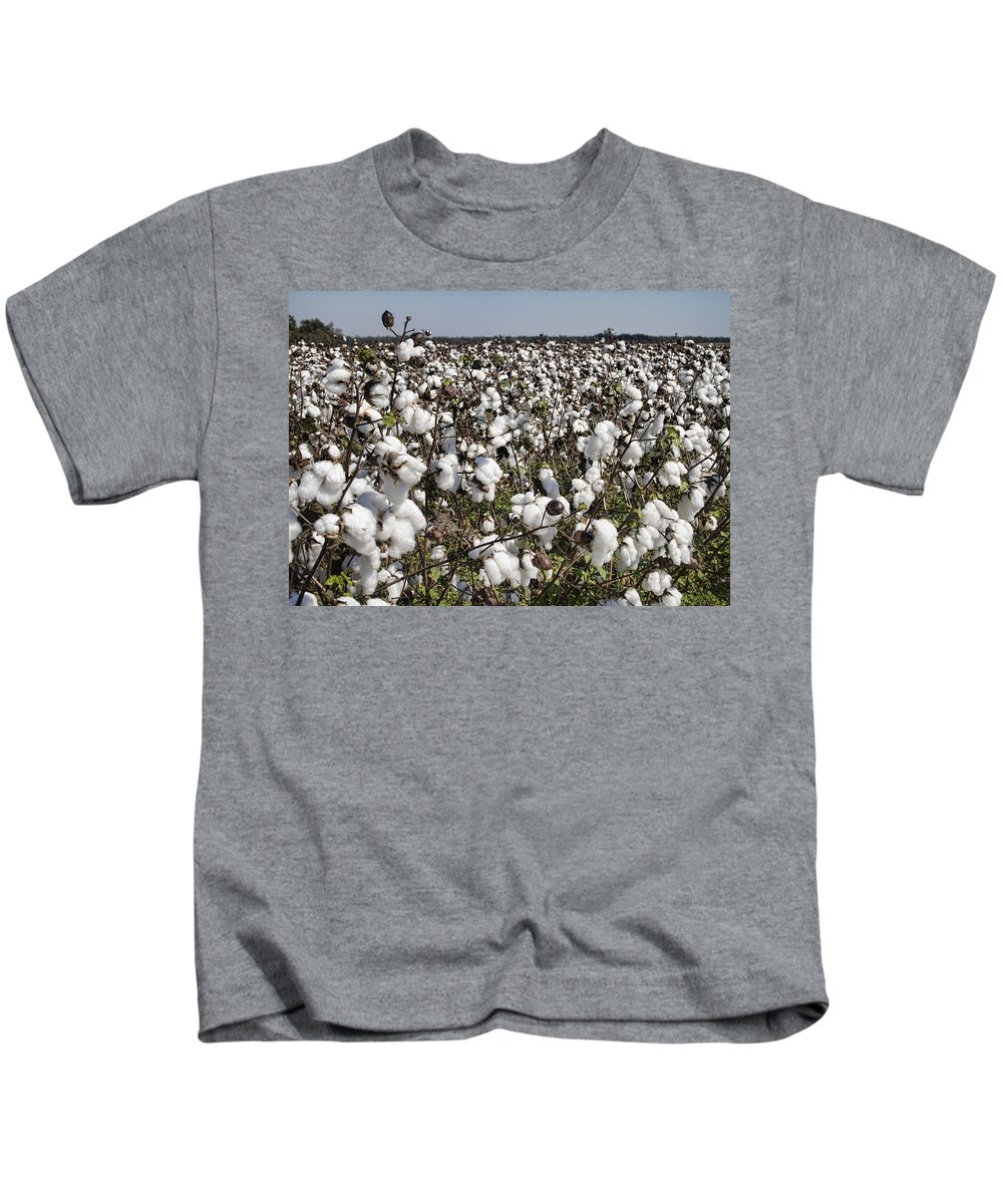 Cotton Kids T-Shirt featuring the photograph Fluffy White Cotton Bolls by Kathy Clark