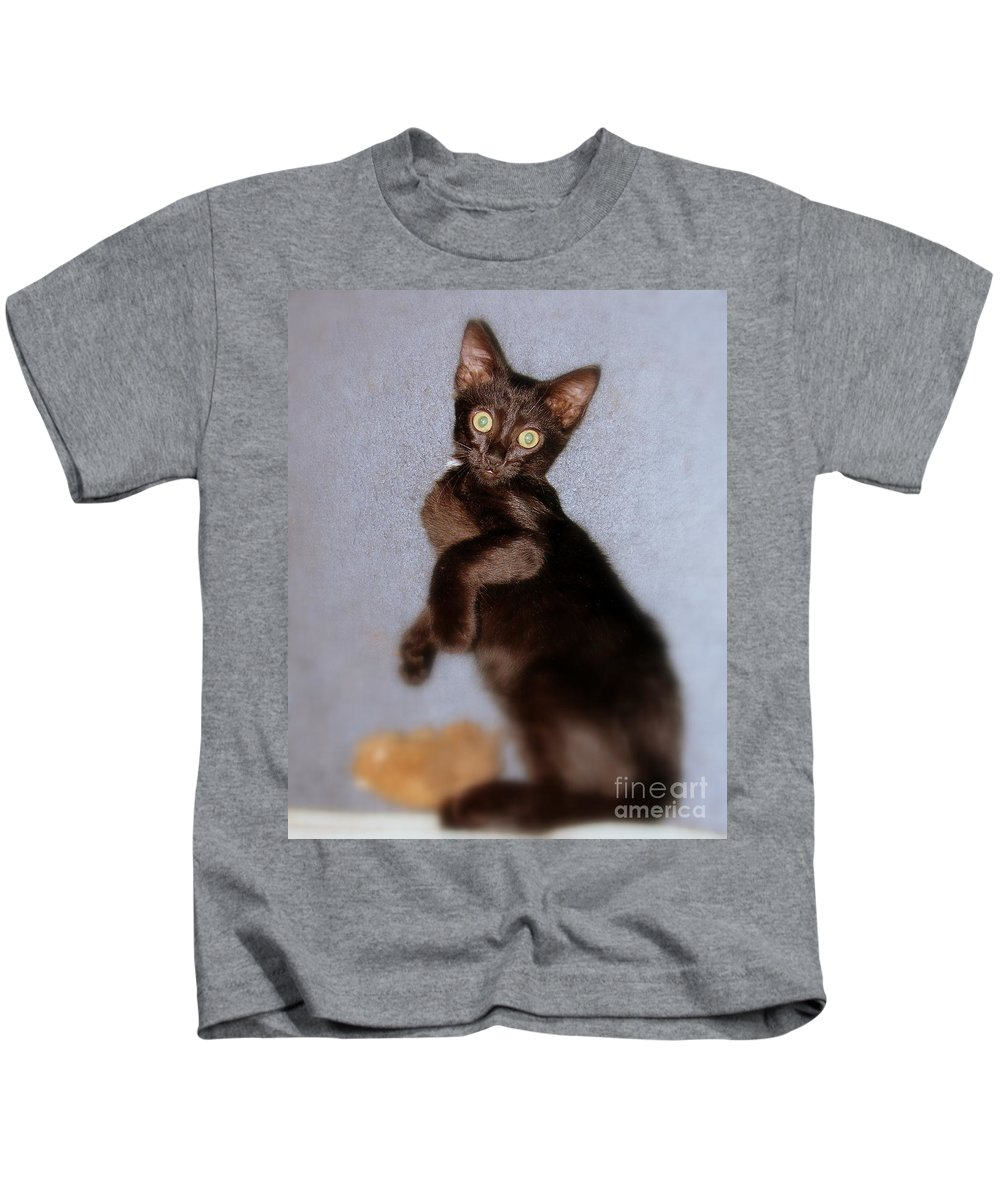 Cat Kids T-Shirt featuring the photograph Fury by Priscilla Richardson