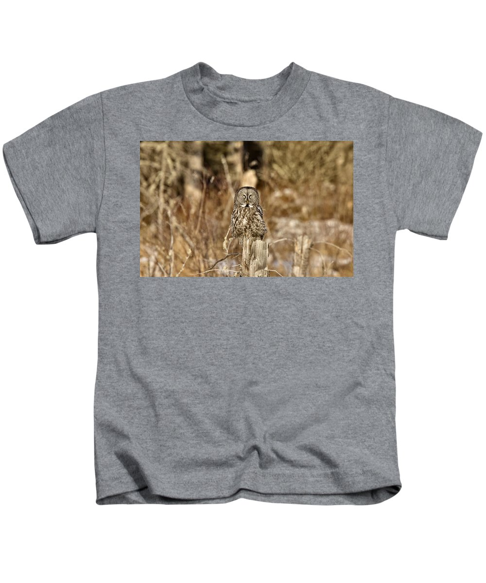 Owl Kids T-Shirt featuring the digital art Great Gray Owl by Mark Duffy
