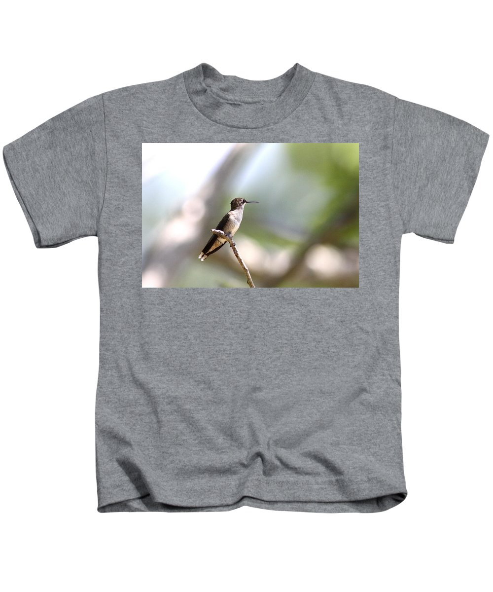 Hummingbird Kids T-Shirt featuring the photograph Hello World by Travis Truelove