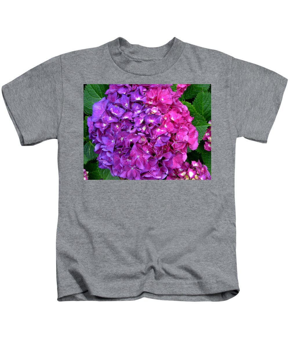 Hydrangea Kids T-Shirt featuring the photograph Hydrangea by Denise Keegan Frawley