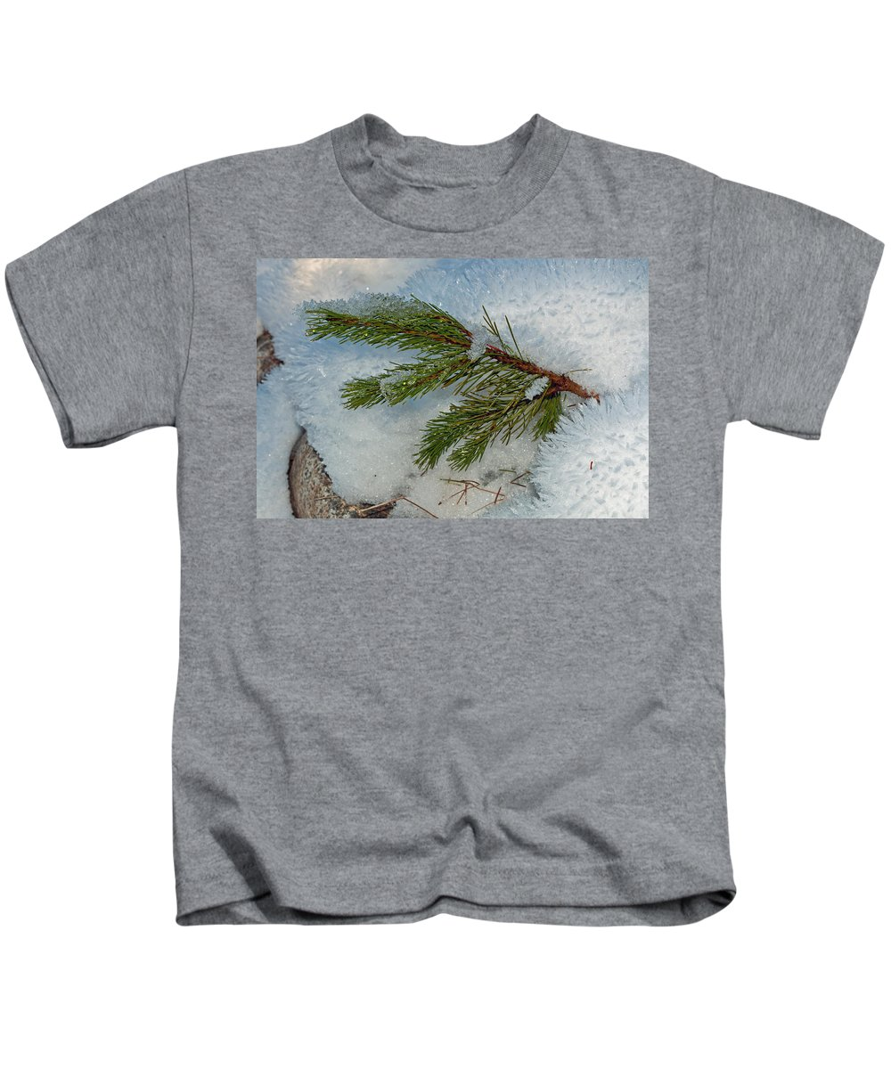 Snow Kids T-Shirt featuring the photograph Ice Crystals And Pine Needles by Tikvah's Hope