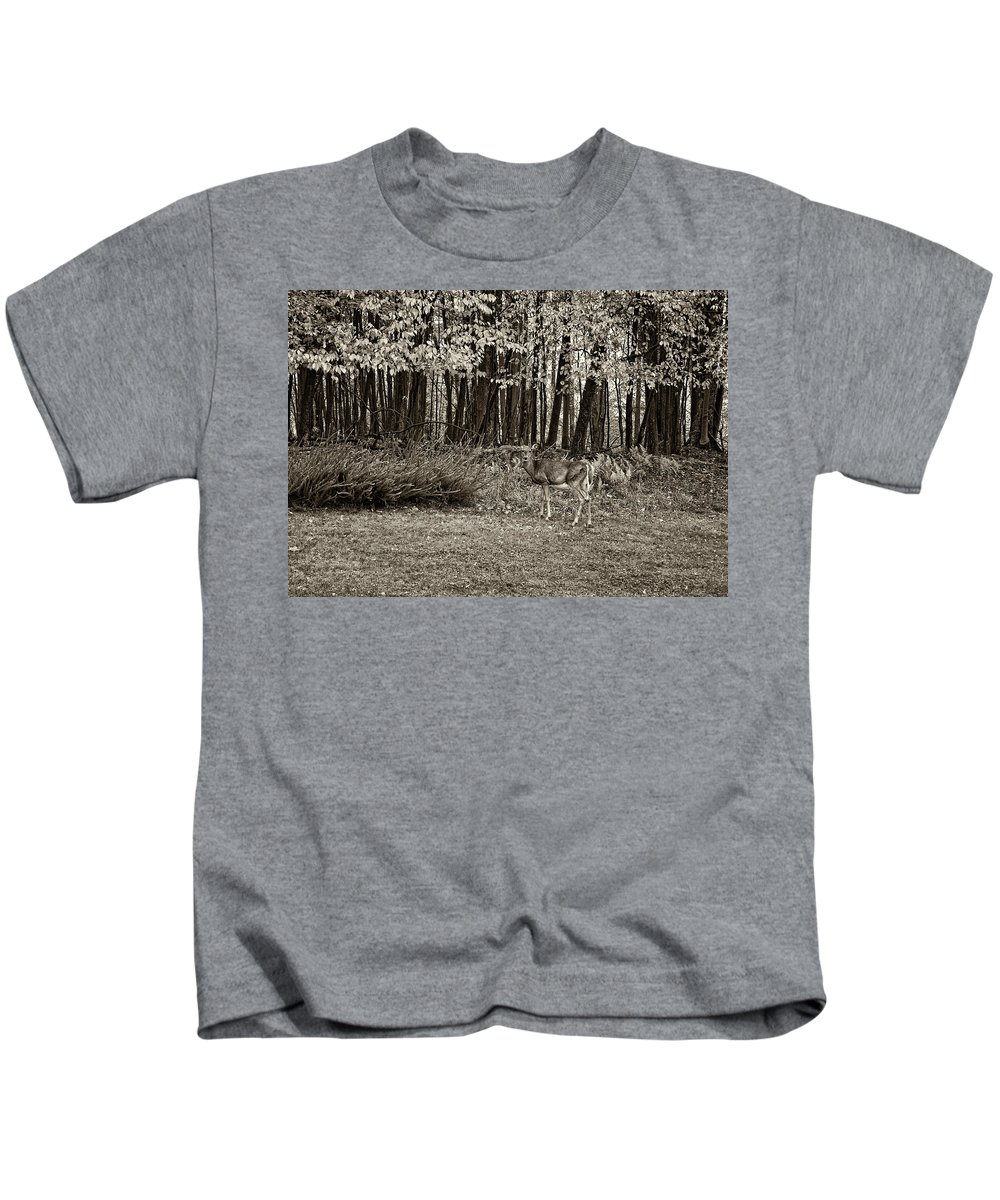 West Virginia Kids T-Shirt featuring the photograph In A Yellow Wood Sepia by Steve Harrington