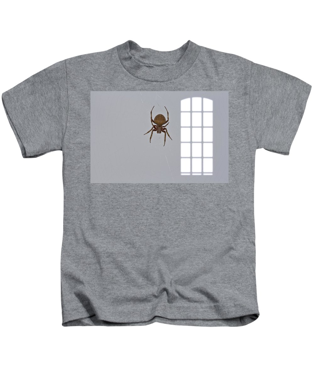 Spider Kids T-Shirt featuring the photograph Itsy Bitsy Spider by Douglas Barnard