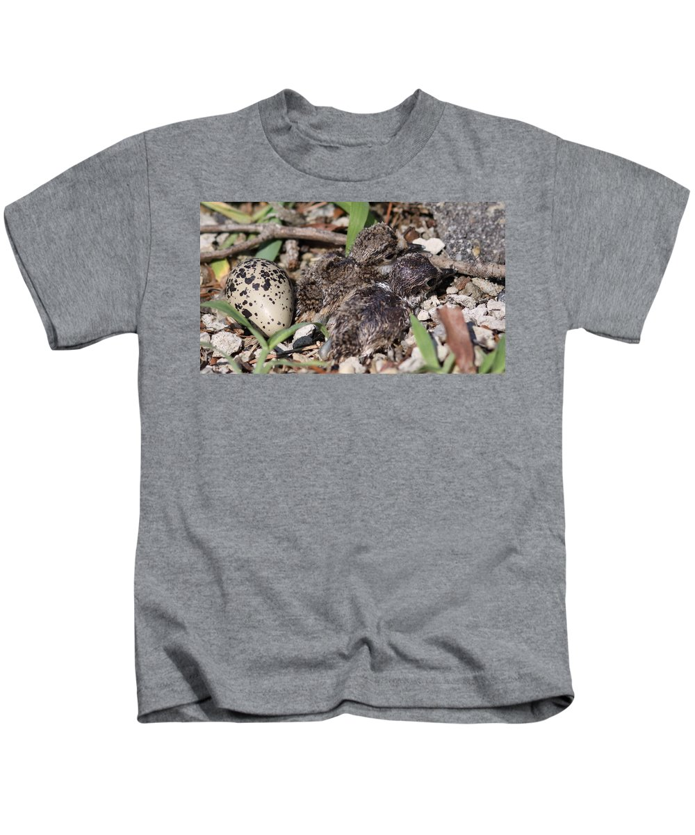Killdeer Kids T-Shirt featuring the photograph Killdeer - Photo 3 by Travis Truelove