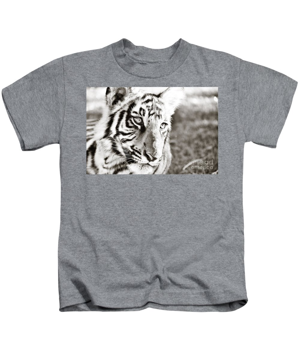 Animal Kids T-Shirt featuring the photograph Lazy Tiger Cub by Katie Plies