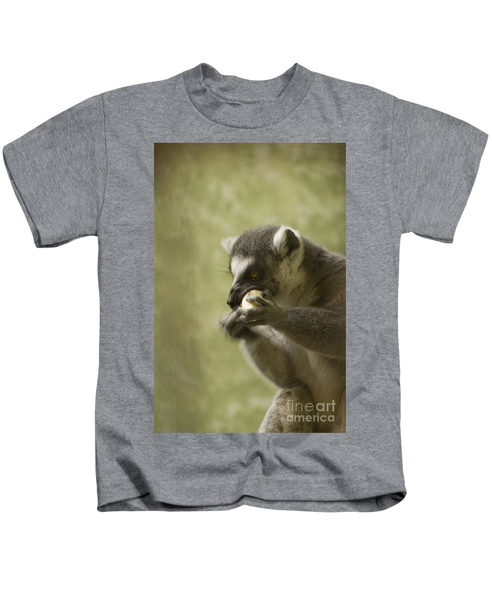 Lemur Kids T-Shirt featuring the photograph Lemur by Heather Applegate