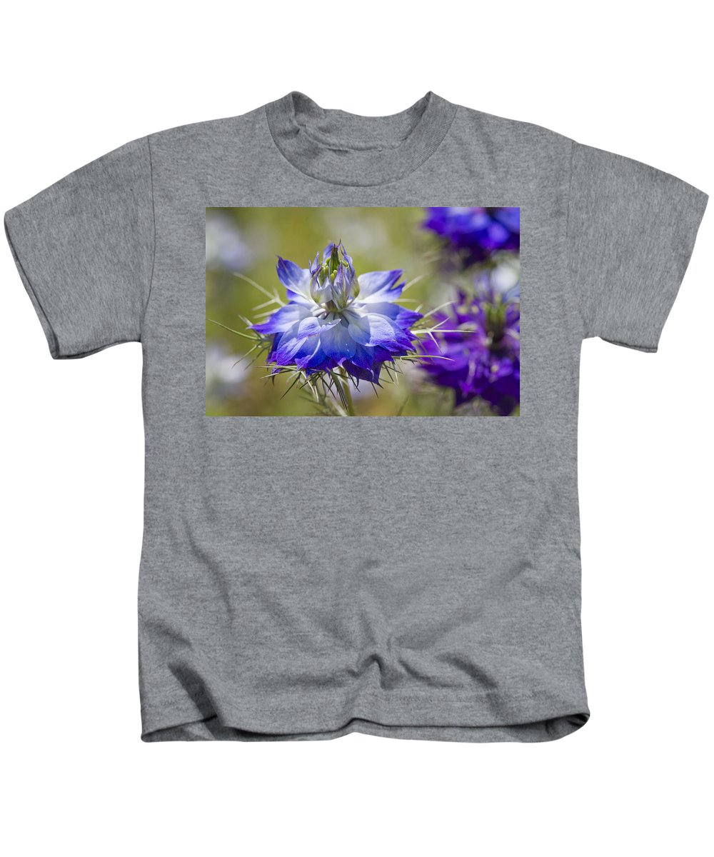 Nigella Kids T-Shirt featuring the photograph Love In The Mist - Nigella by Kathy Clark