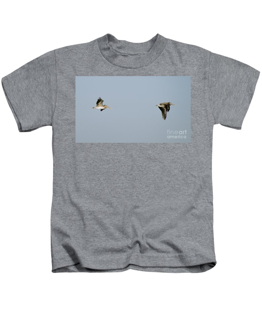 Pelicans Kids T-Shirt featuring the photograph Pelicans In Flight 2 by Tim Mulina