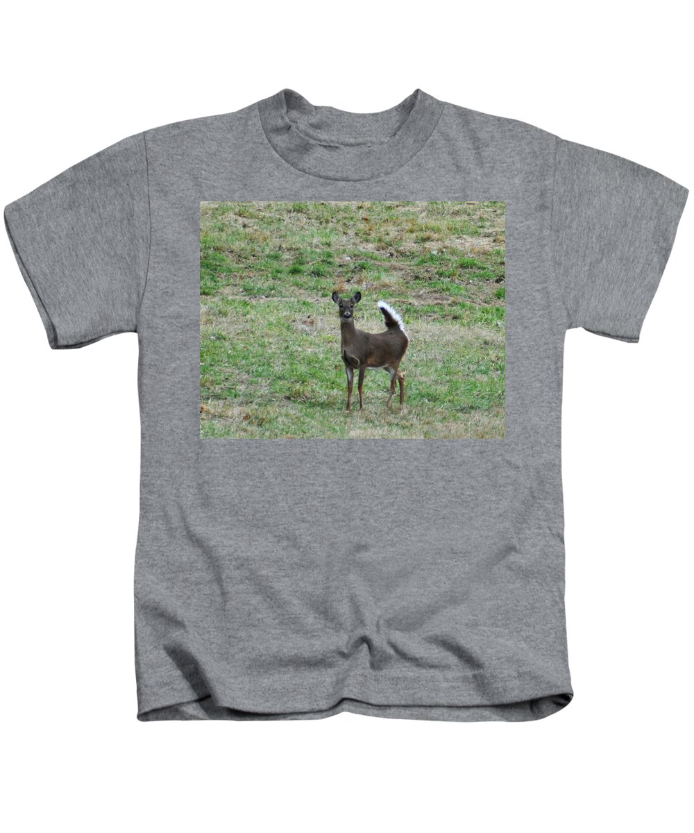 Pennsylvania Kids T-Shirt featuring the photograph Pennsylvania White Tail Deer by Bill Cannon