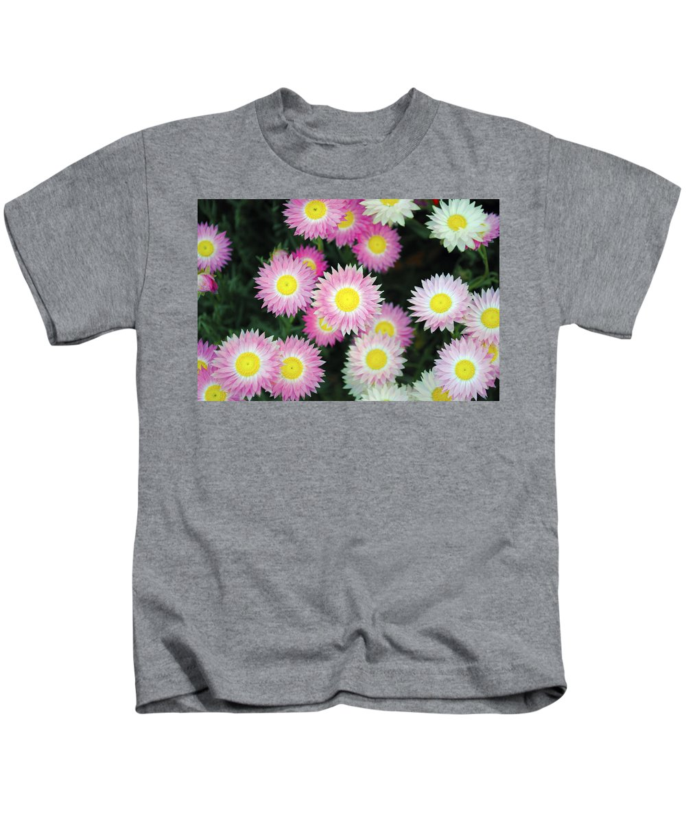 Pink Flower Kids T-Shirt featuring the photograph Pink Flowers by Sumit Mehndiratta