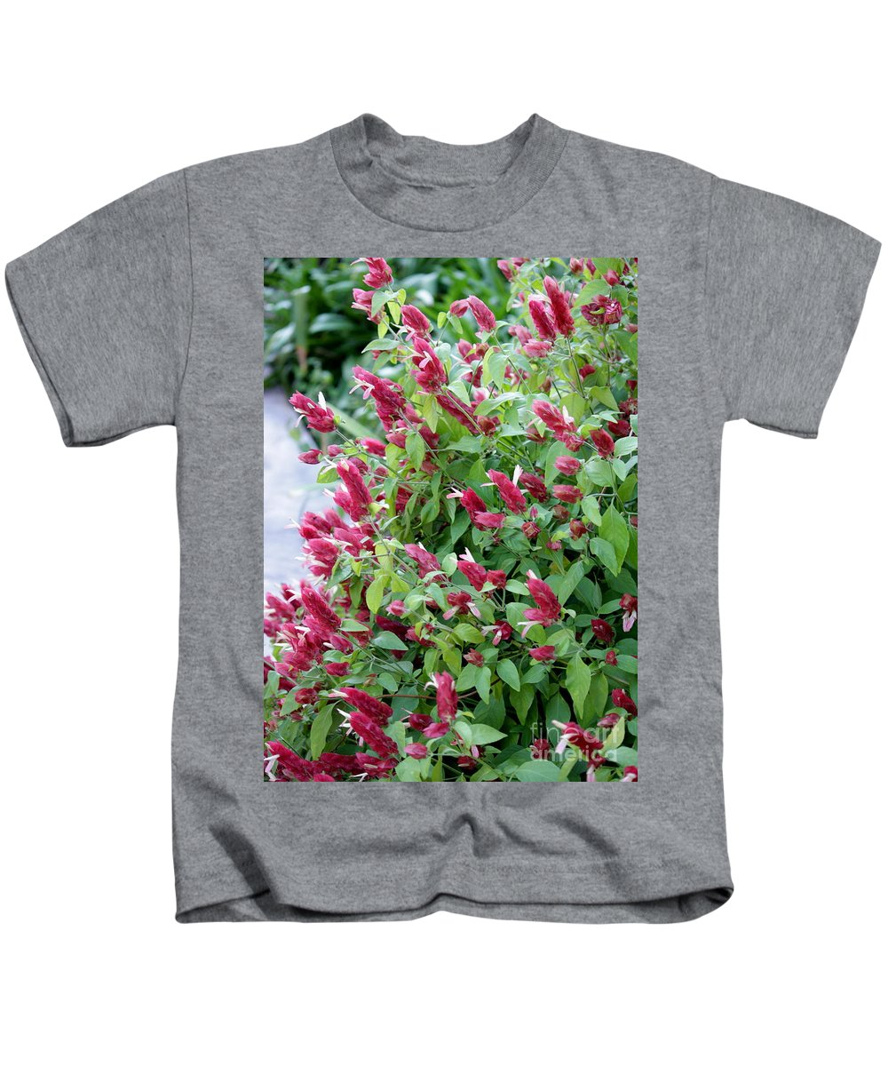 Pink Flowers Kids T-Shirt featuring the photograph Pink Shrimp Plant by Carol Groenen