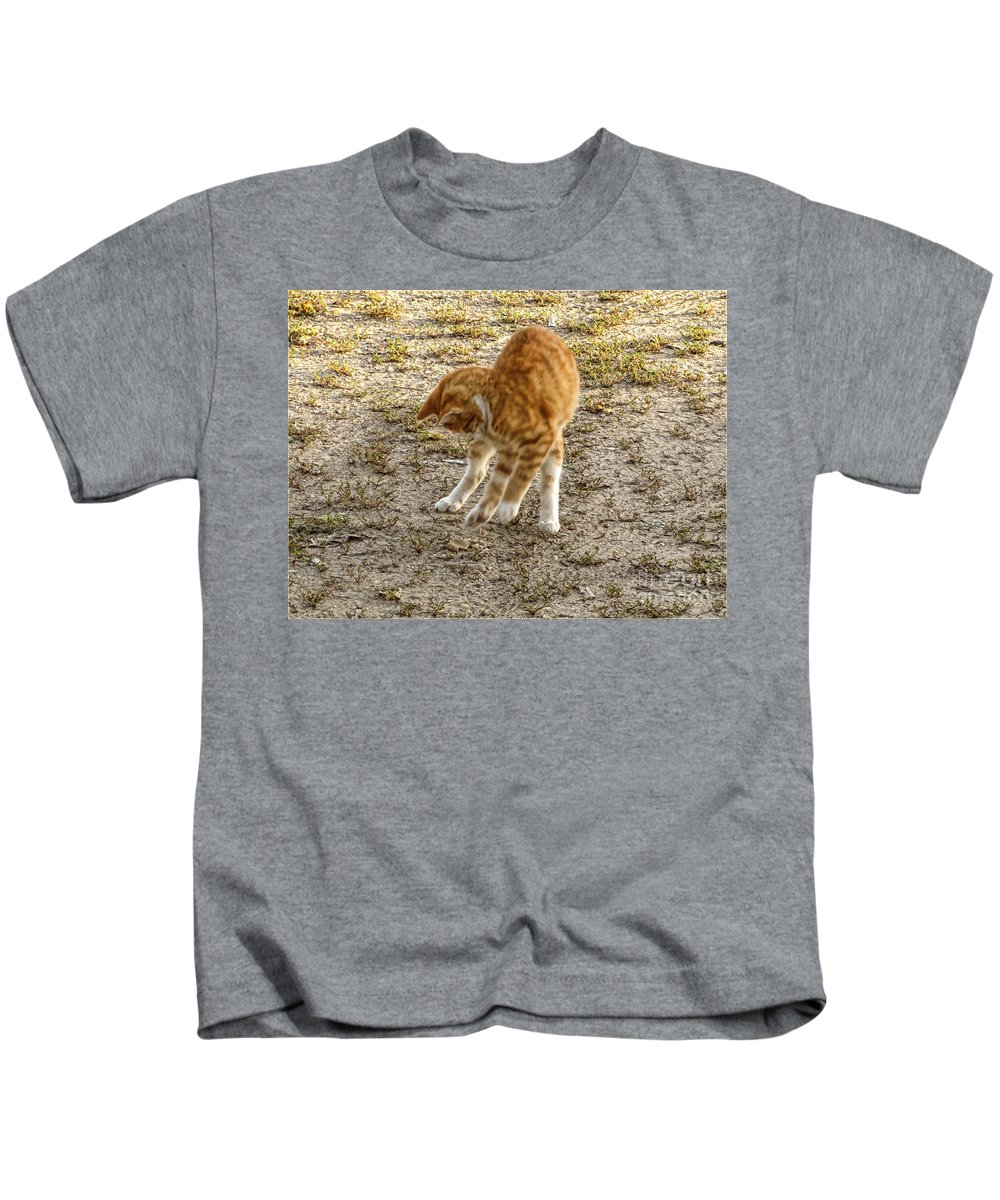 Nature Kids T-Shirt featuring the photograph Playful Yellow Kitty by Debbie Portwood